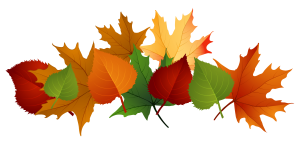 fall-leaves-fall-leaf-clipart-no-background-free-clipart-images-2
